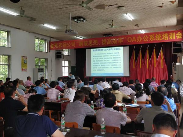 赴广西某农场开展OA办公系统培训会